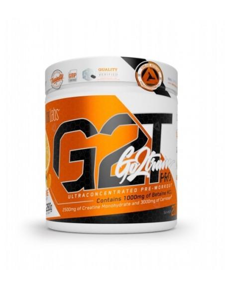 G2T GO2TRAIN PRO